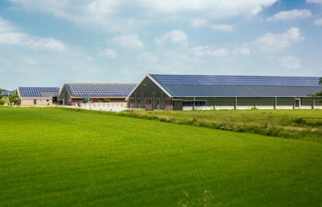 3036271-inline-i-1-how-in-the-future-we-could-buy-energy-from-zonneparkazerwijn2