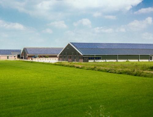 전력의 공유 경제- 이웃에게서 전기를 구매하기(네덜란드)